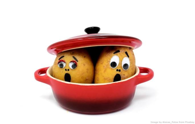 Cosa hanno a che fare le patate con Agenda 2030 e lo sviluppo sostenibile?