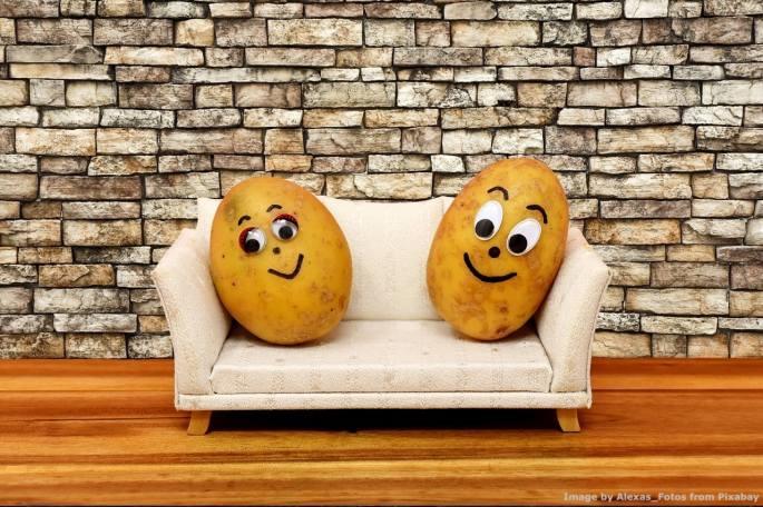 Sicuramente lorsignori paladini dello sviluppo sostenibile ed auto-nominati campioni dell'ambiente mangiano le patate. Ma dubito che sappiano anche solo riconoscere una coltivazione